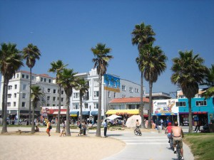 Beach_bikepath_in_the_Venice_Beach_park,_California