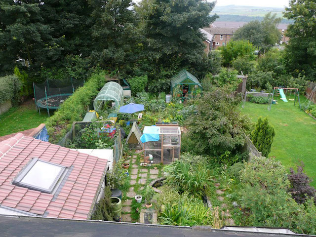 claire_gregorys_permaculture_garden